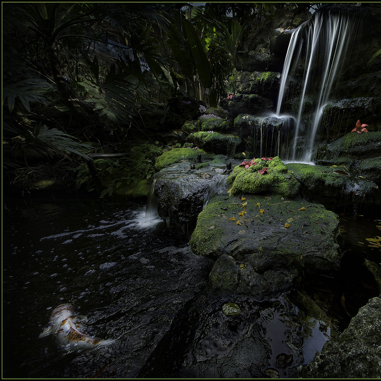 Selby waterfall best of show 2016 jc zeiss sm hfkyoc