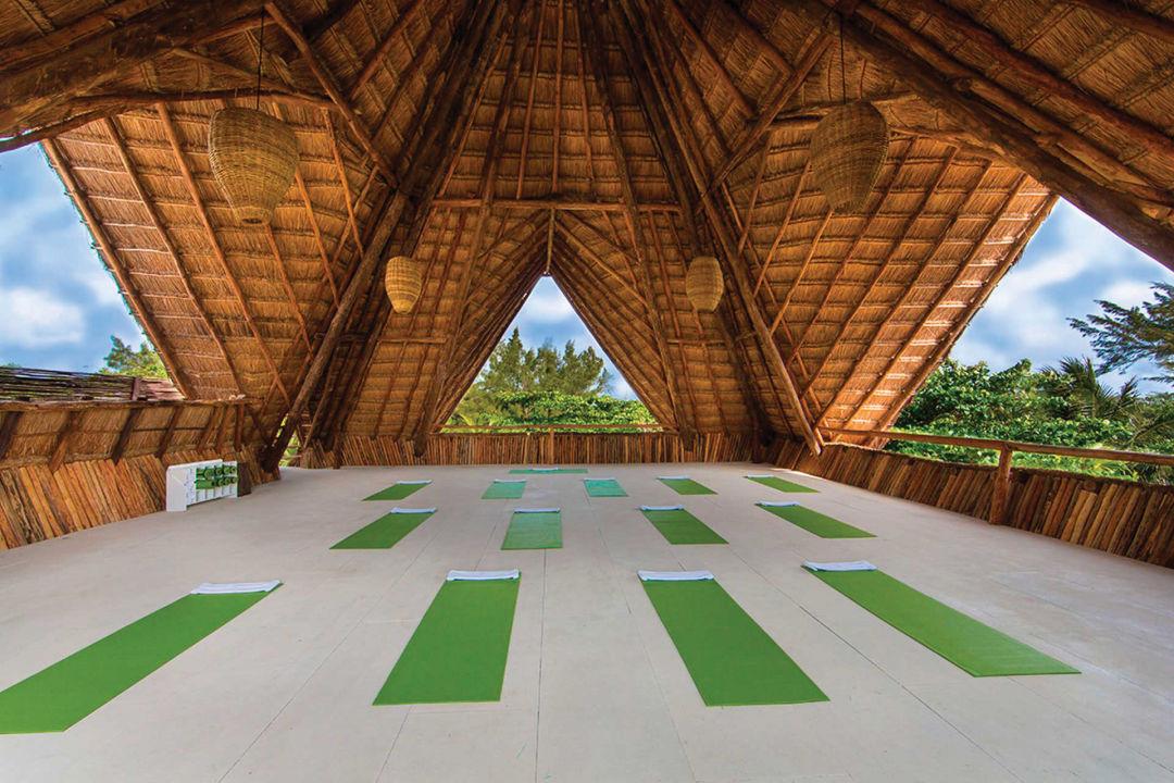 1216 mexico feature tulum hotel yoga beach ppdpdu