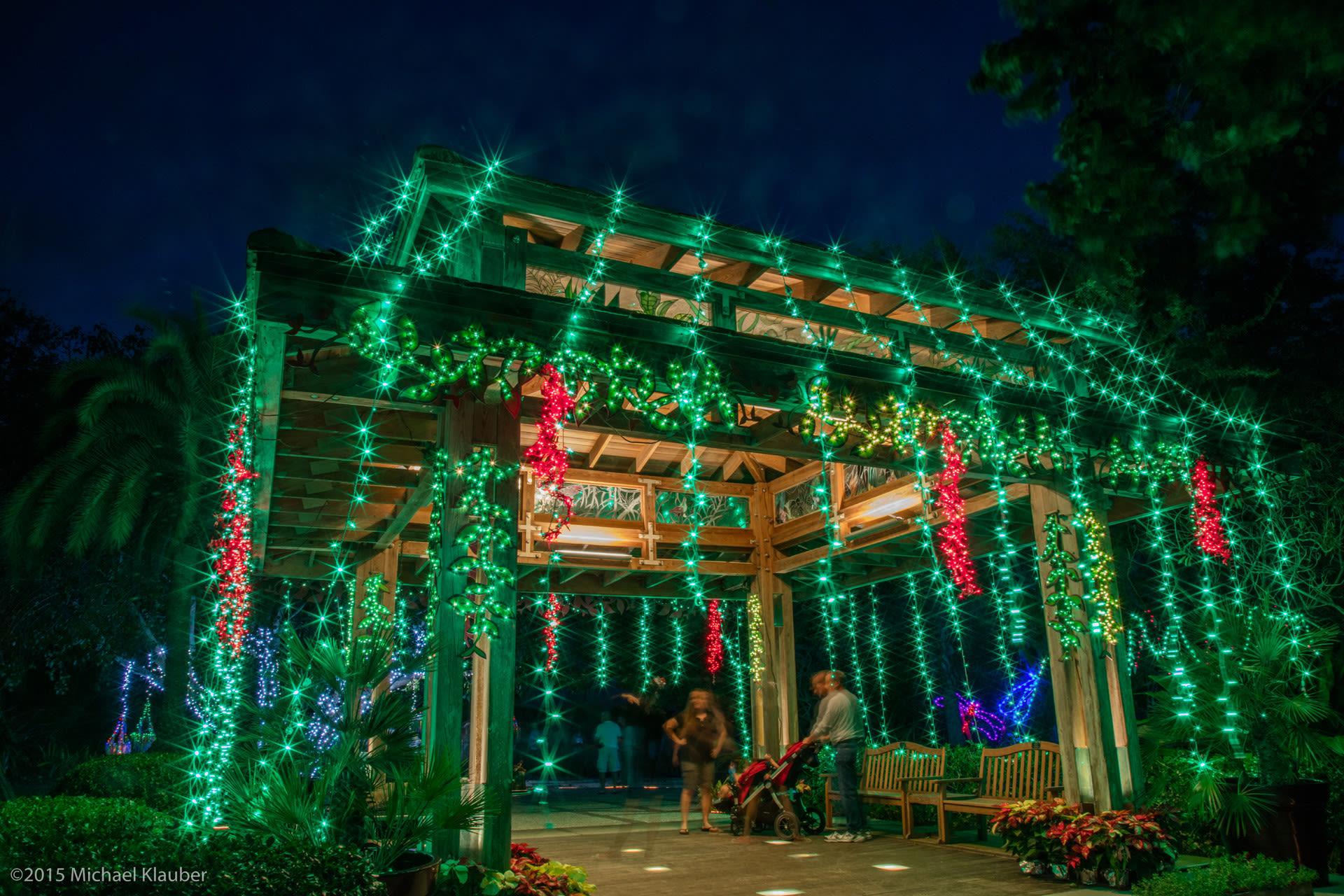Selby gardens lights in bloom qymlfg
