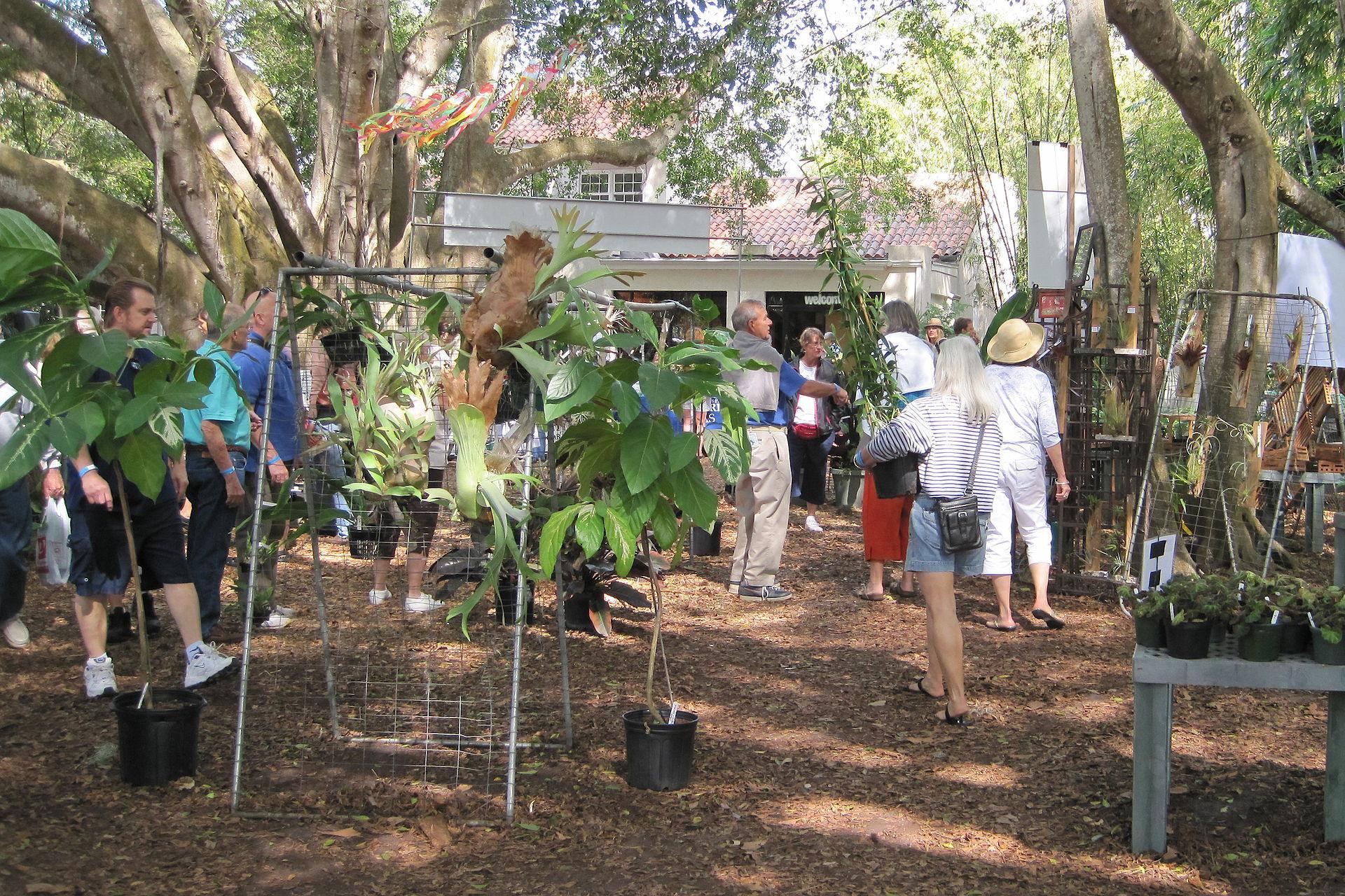Selby gardens plant sale gtjsfz