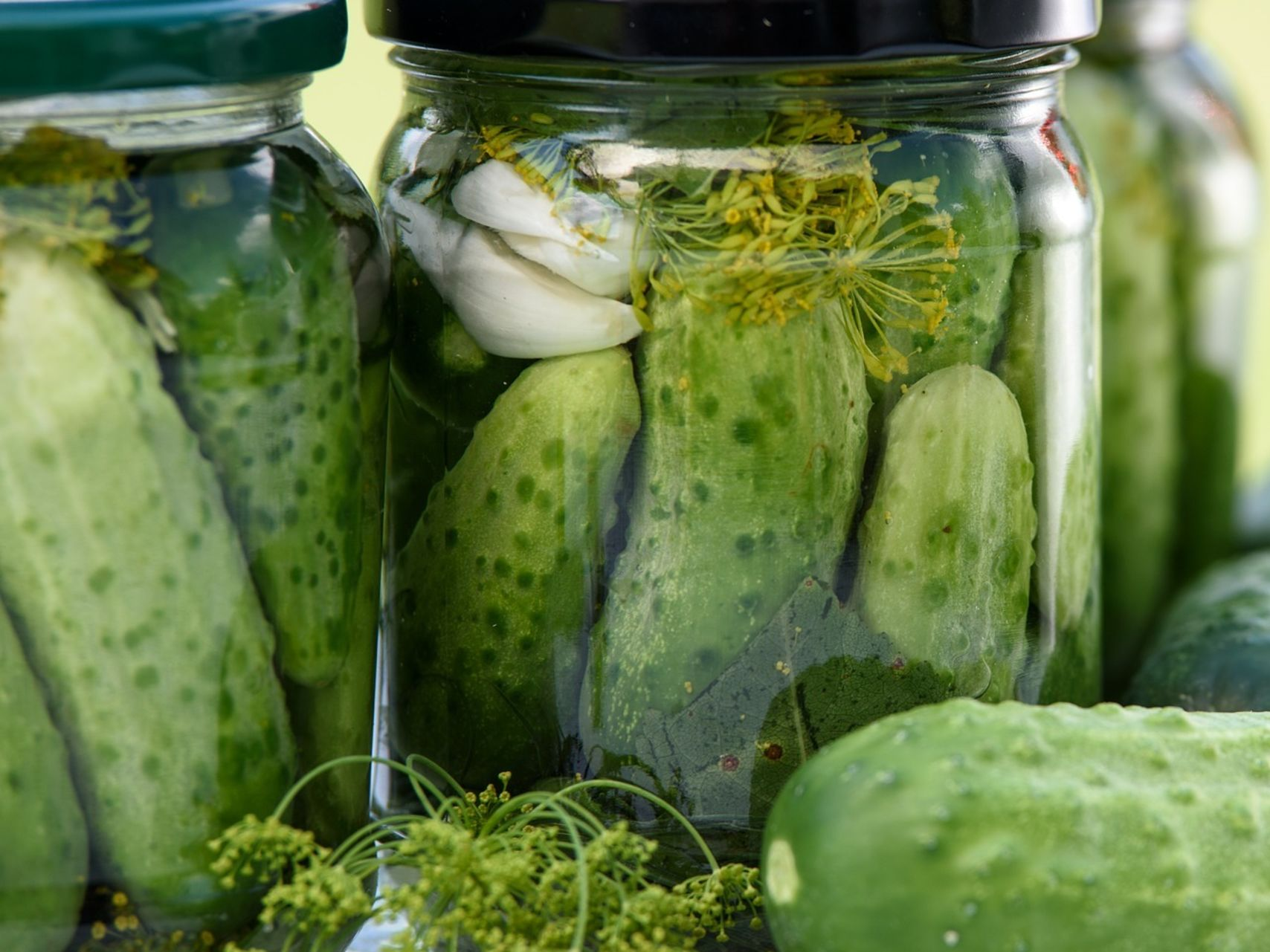 University Town Center Mall >> Happy National Pickle Day | Recipes | Sarasota Magazine