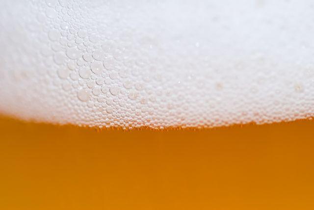 Beer xdbvla