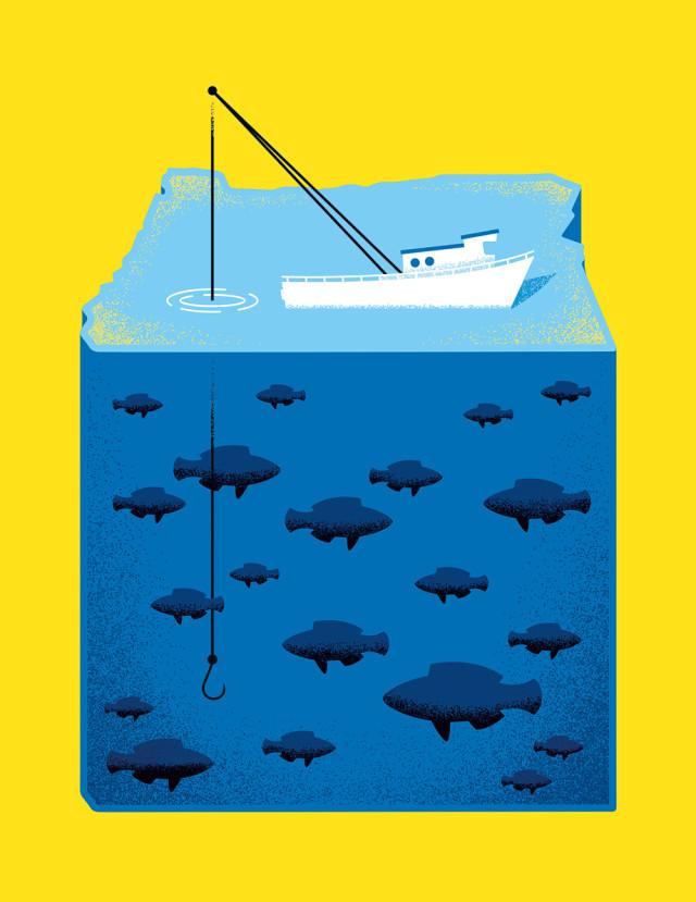 1115 pdx fish cpnytt