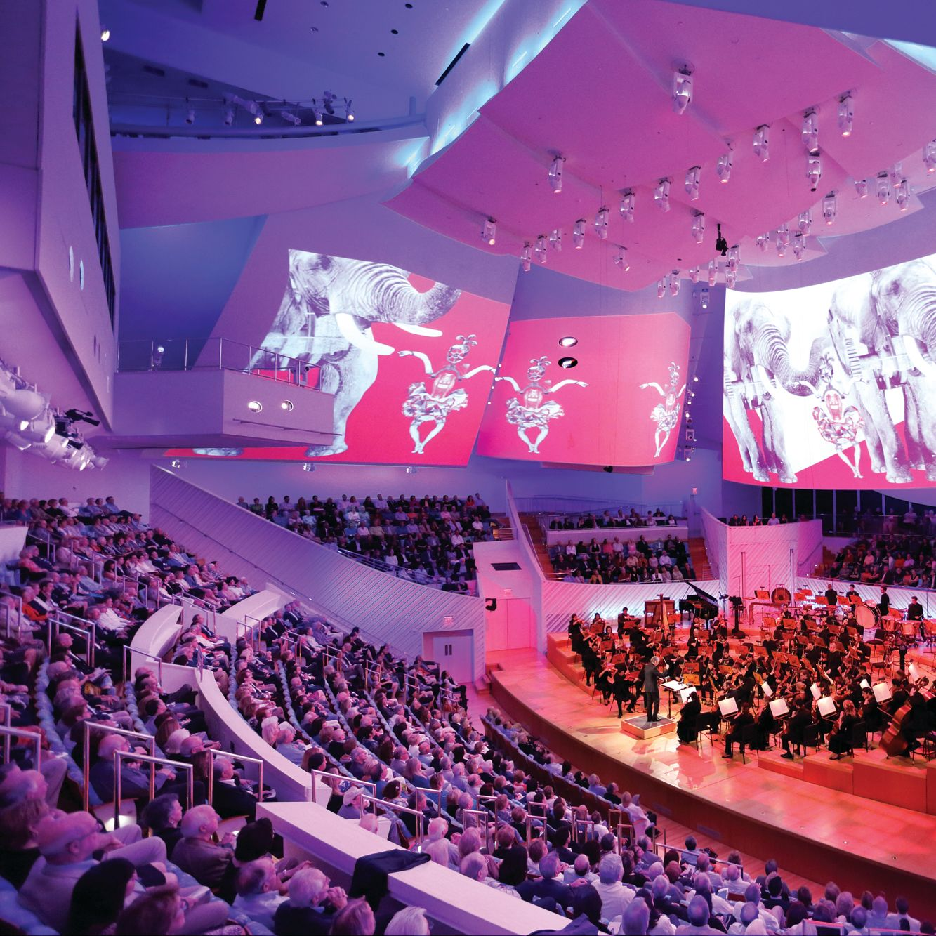 New world symphony miami zctt8z