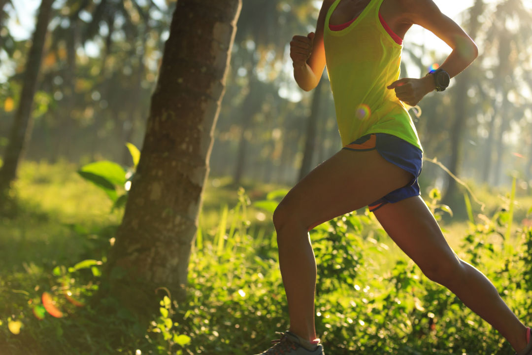 Shutterstock 609911294 t8k1dg