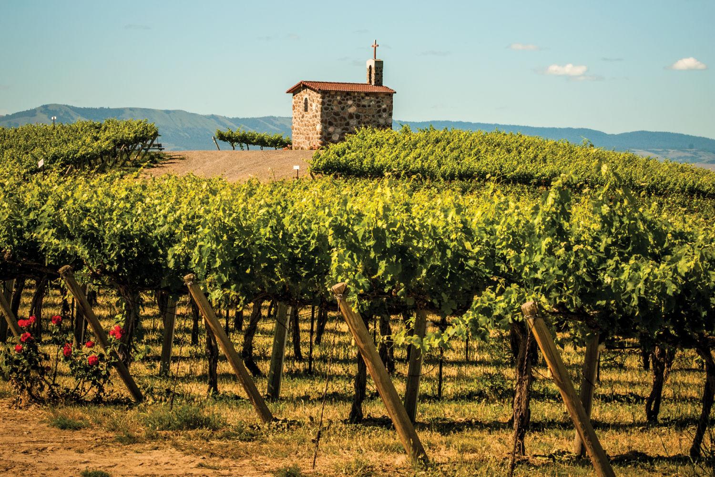 Washington Wine: Best Cabernet Sauvignon of 2016 | Seattle Met