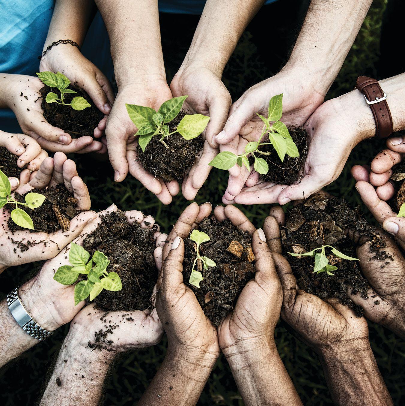 Shutterstock 604290230 cpfxpp