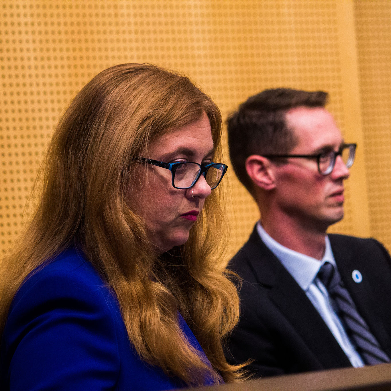 Lisa herbold budget committee rob johnson city council hgctzf