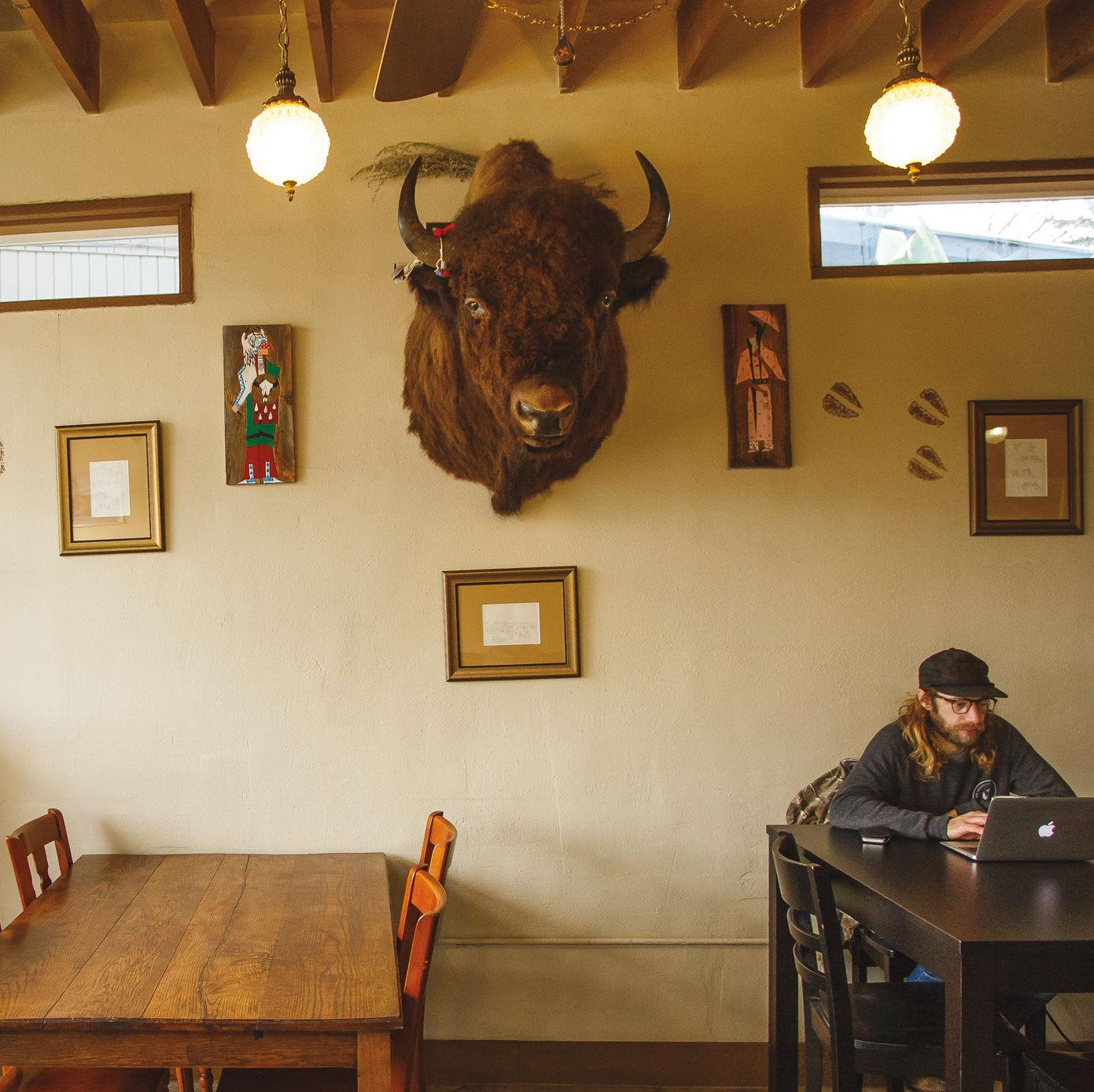 Pomo 0317 coffee neighbors bison iexa94