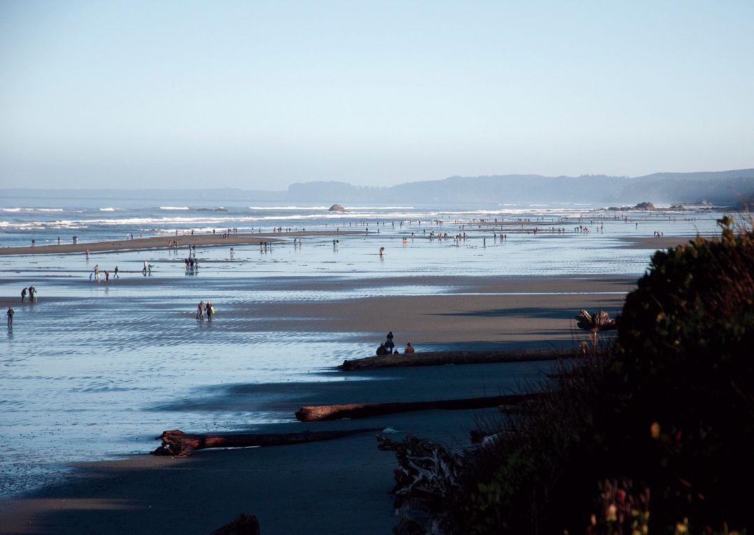 Washington\'s 21 Best Beaches | Seattle Met