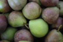 Seckel pears at kiyokawa a9lbnl