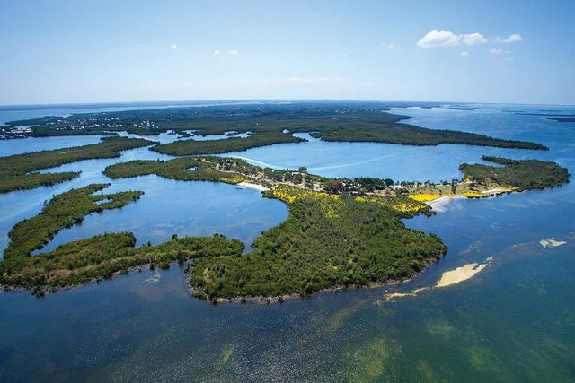 Little bokeelia island yfktyj