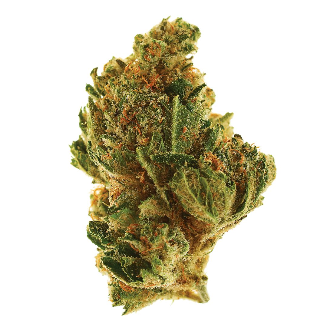 Best day ever headband kush 0356 s2vqfy