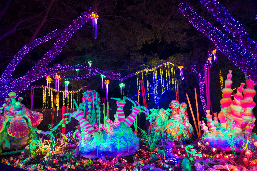 Best Christmas Lights Reddit 2020 Where to See the Best Christmas Lights in Houston | Houstonia Magazine