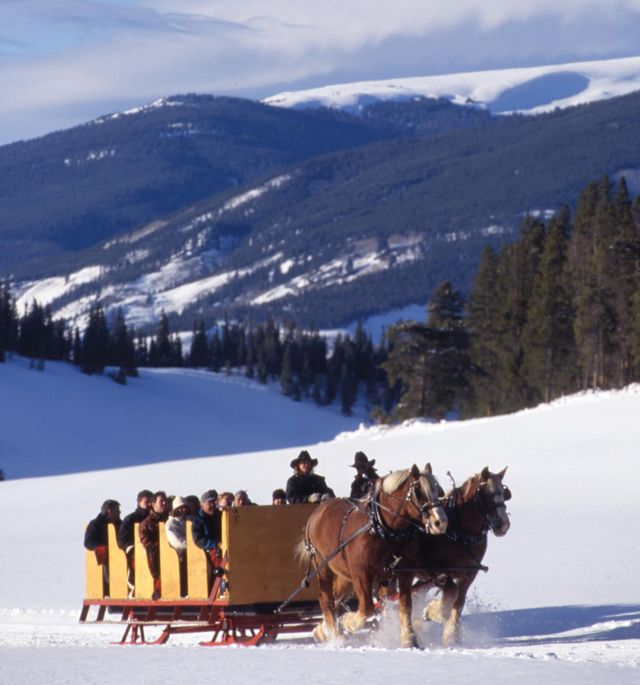 Cosu winter 2012 family sleigh rides bmrise