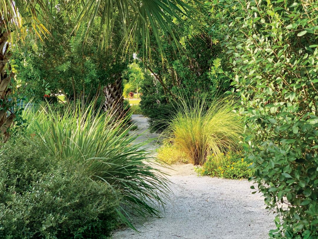 Bye Bye Lawn Four Great Alternatives To Grass Landscaping Sarasota Magazine