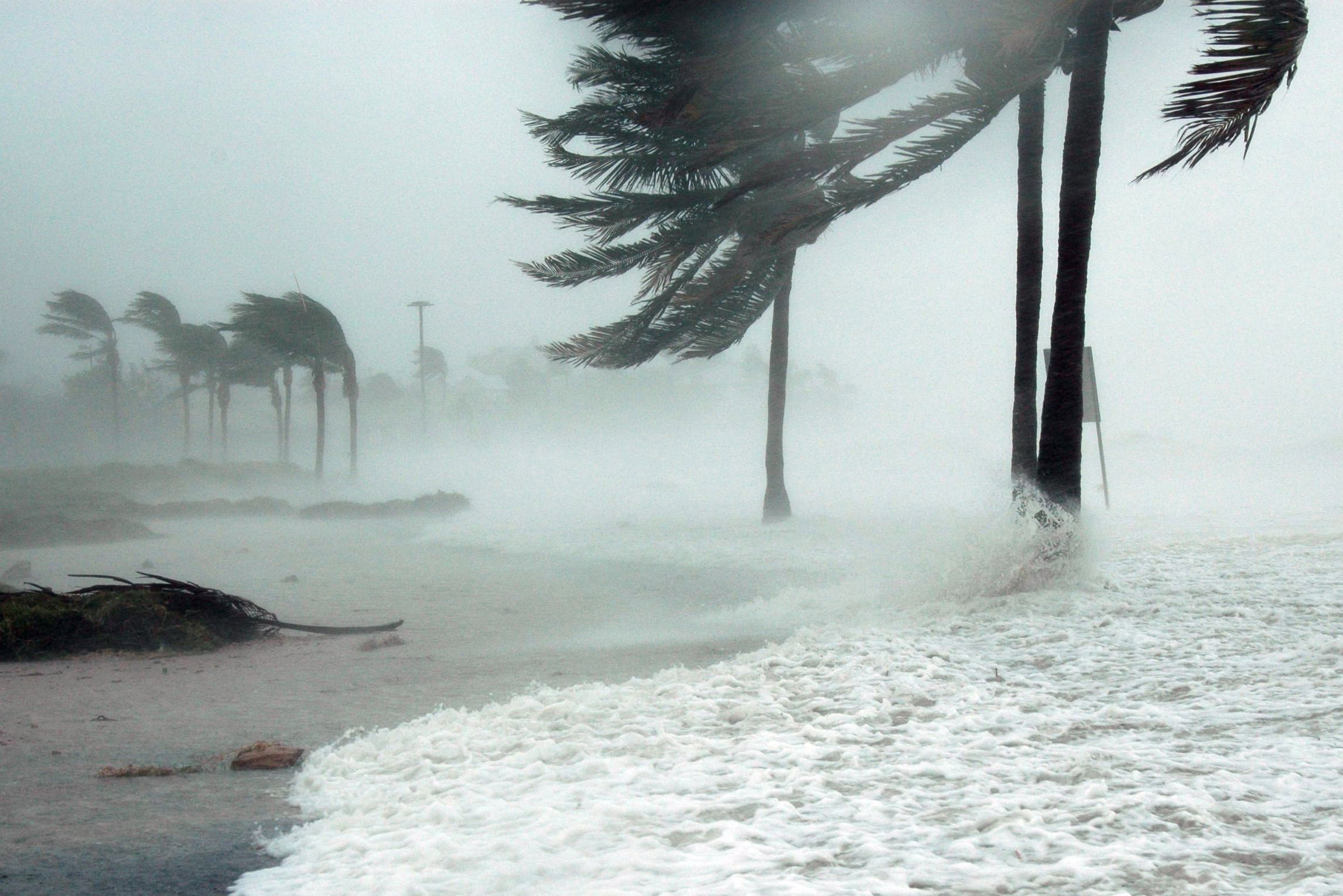 Hurricane jgjegs