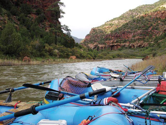 Cosu summer 2013 camping kodi rafting x7gtf6