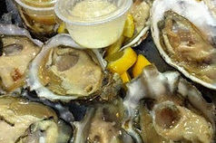 Oysters2 r83zfh