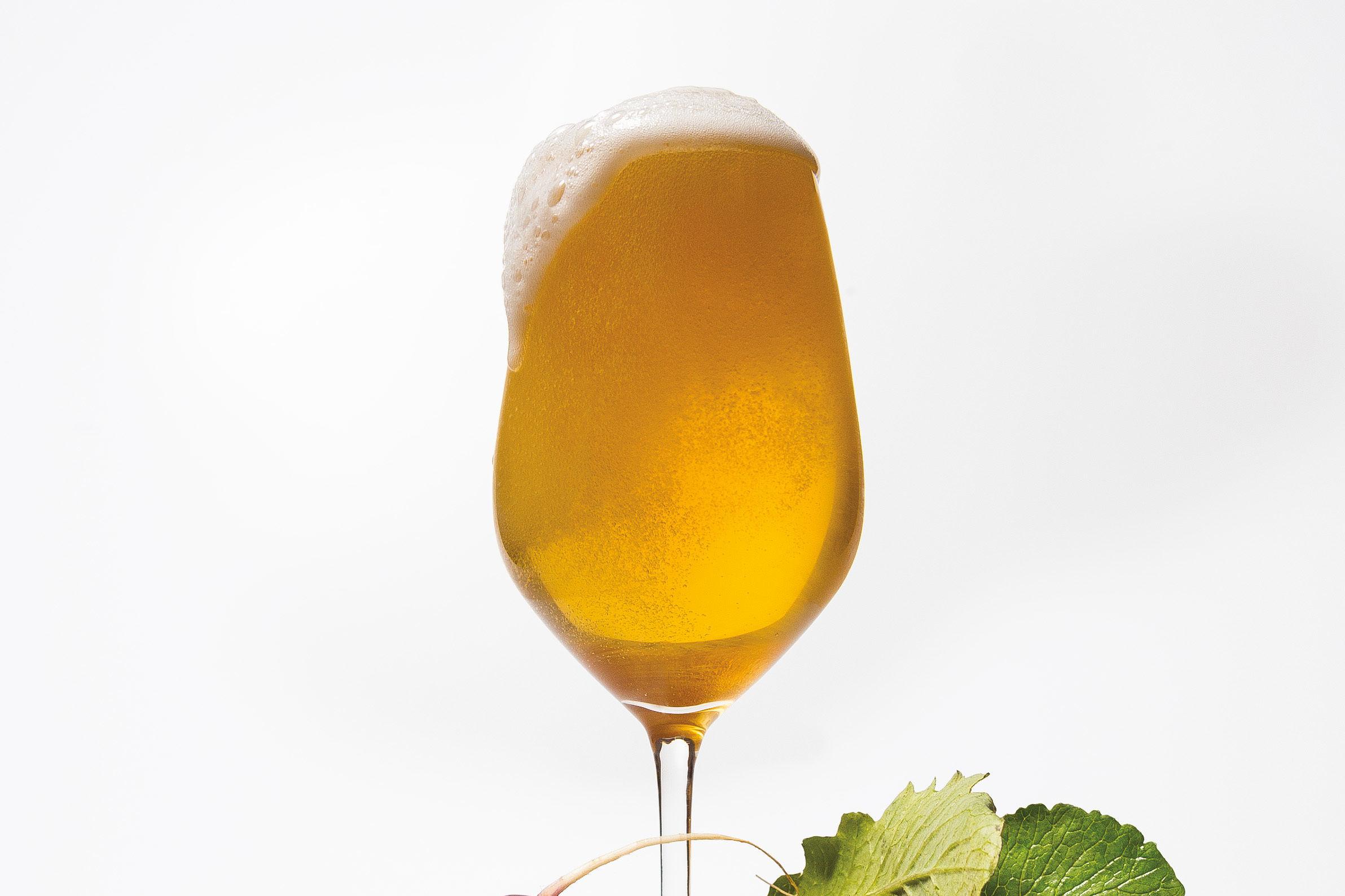 Pomo 0517 beer in bloom dz1no9