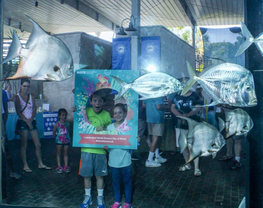 Kids at 2016 world oceans day  credit mote marine lab jp8ttb