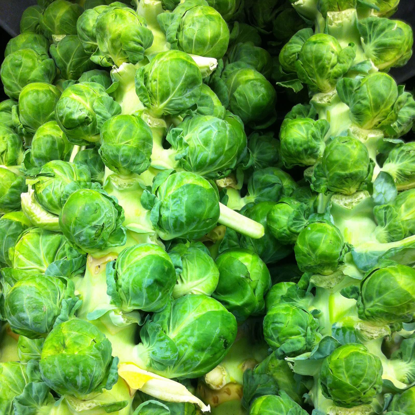 Brussels sprouts l8nvsw