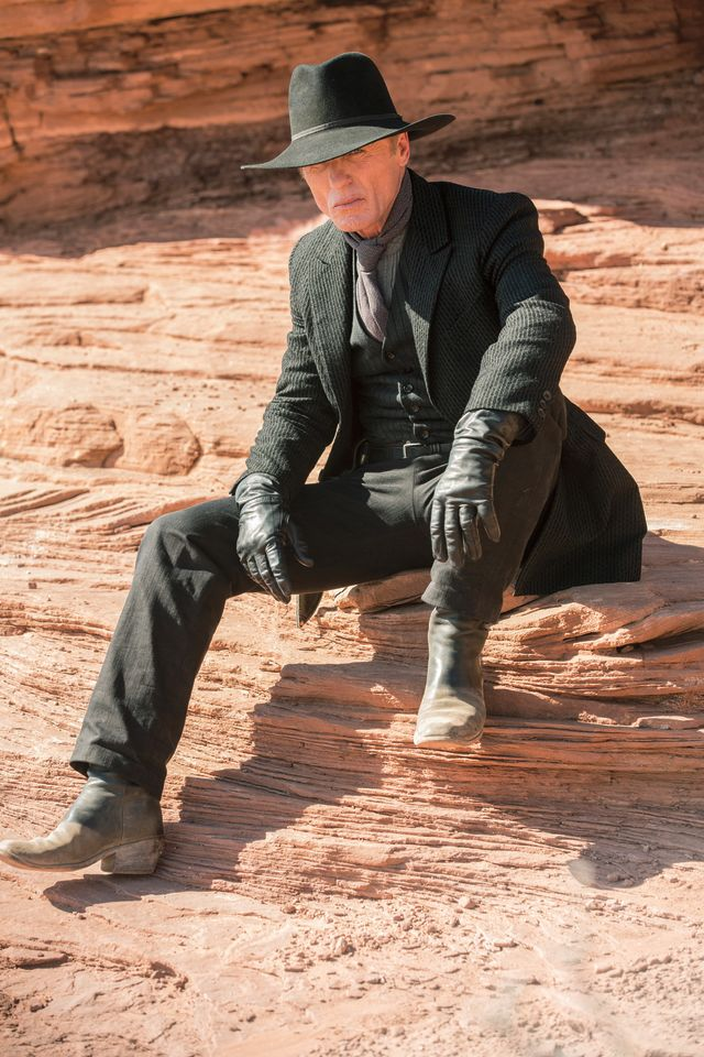 Westworld hbo ed harris2 dgstkl