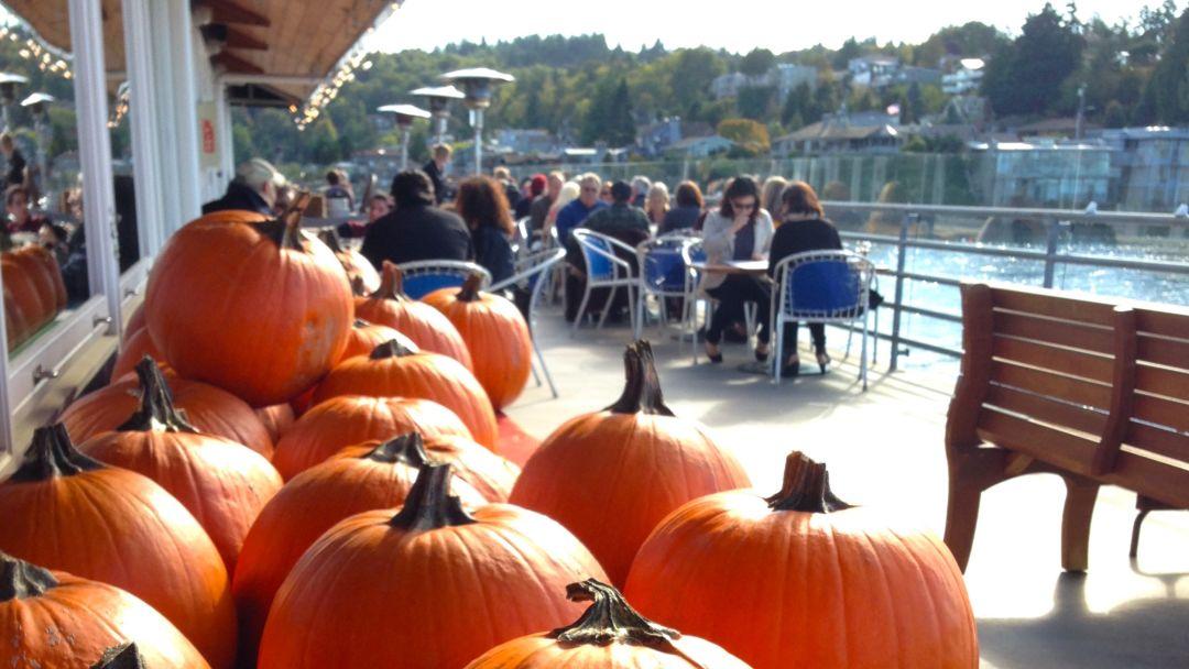 Ray s pumpkin carving 2 wuslgz