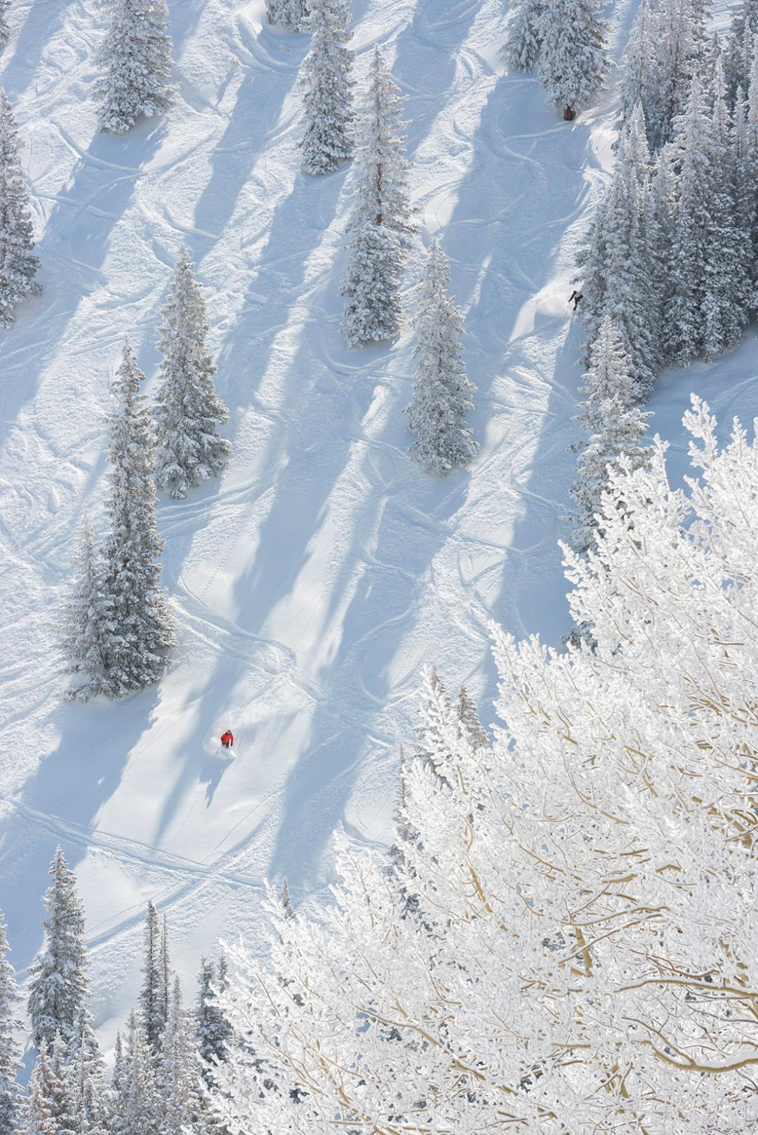 1114 slalom skier iknog2