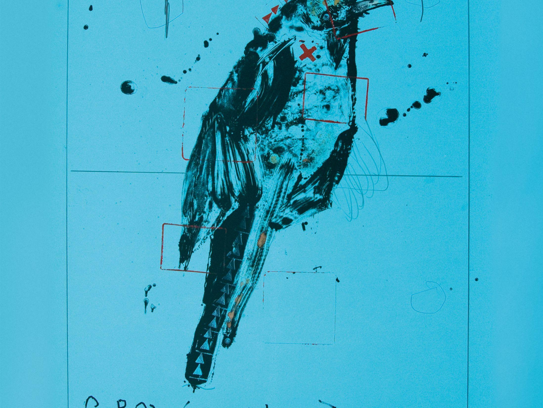 Pomo 0217 crow s shadow rick bartow cznrnz