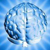 Hypnosis meditation brain 1 300x170 qd19lj