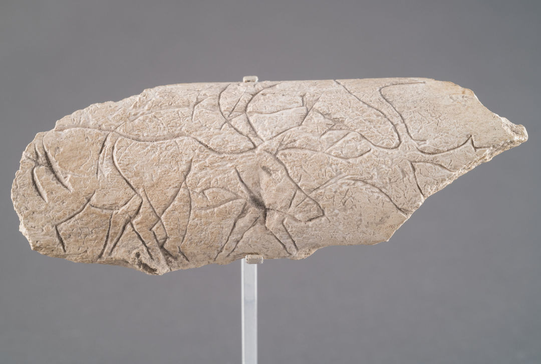 Engraved bone fragment