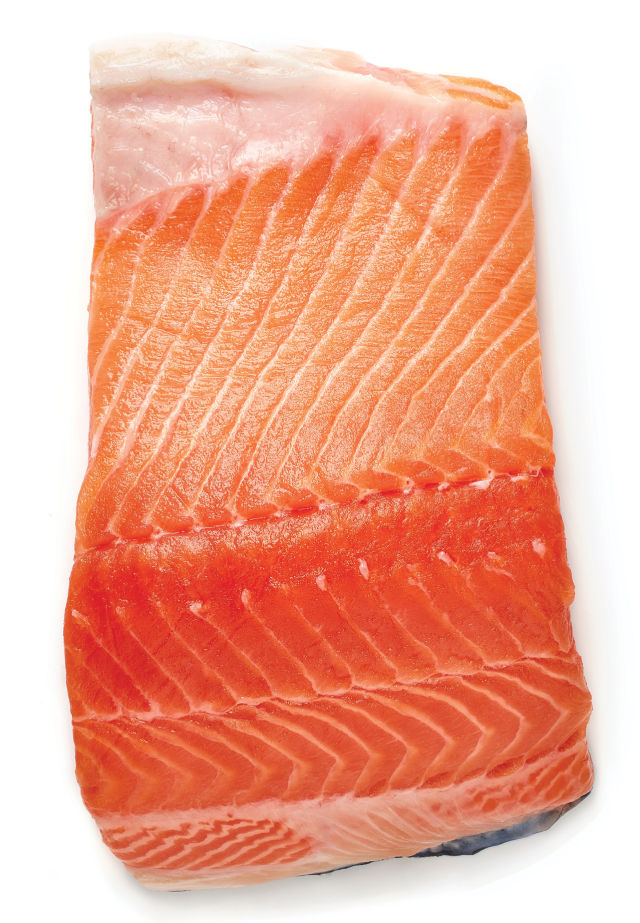 1017 salmon filet tih63e