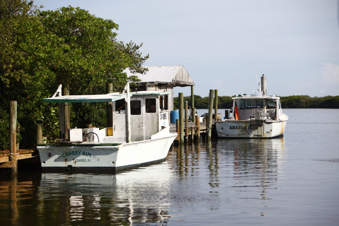Fishing boats in Cortez