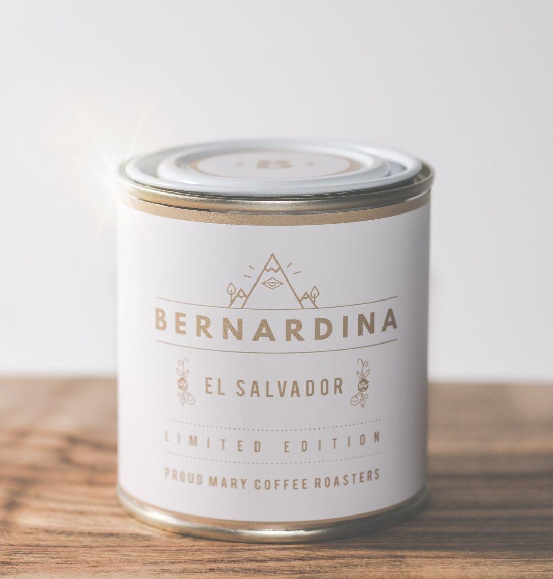 Bernadina proud mary vmd92a