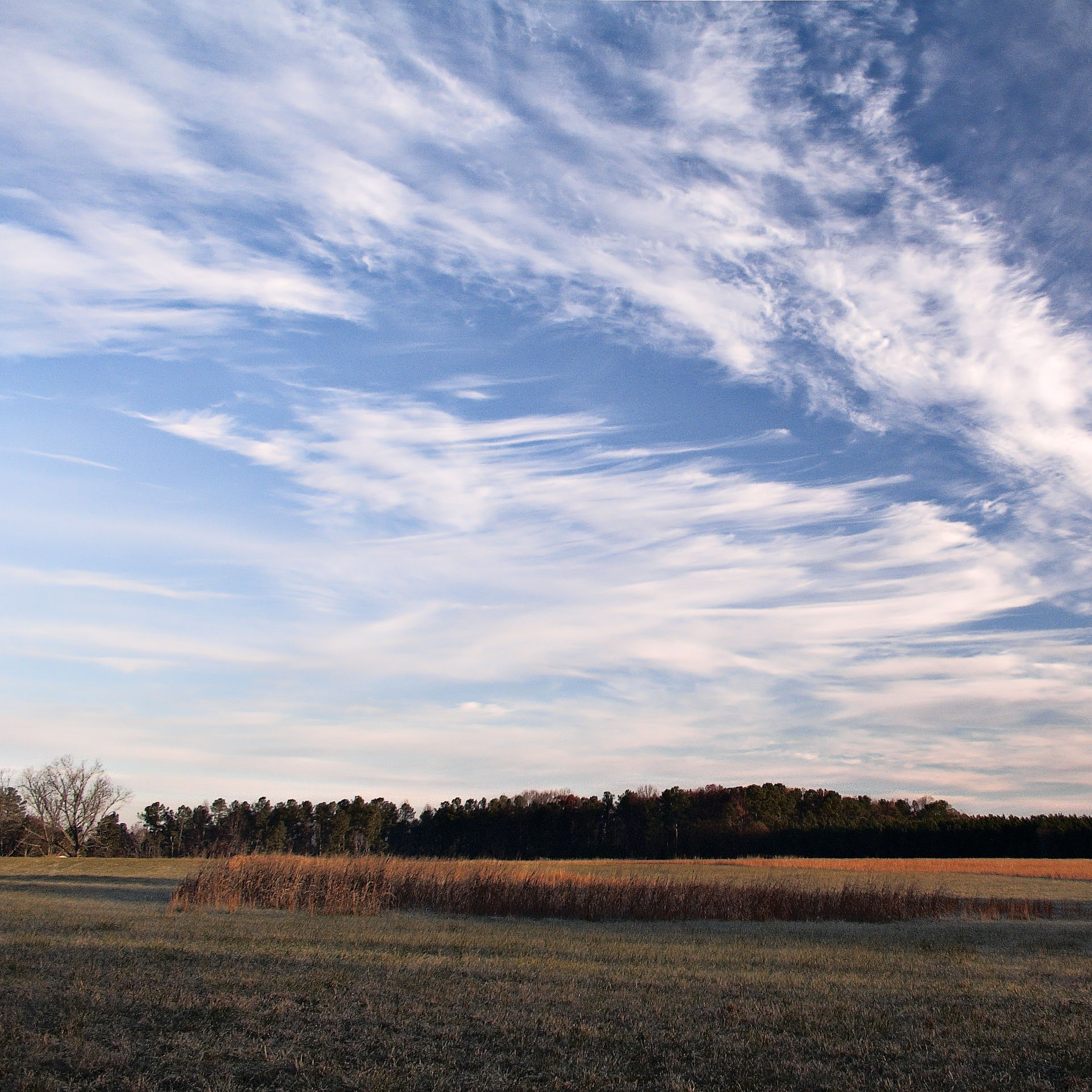 Cirrus clouds cold day gwbcgn