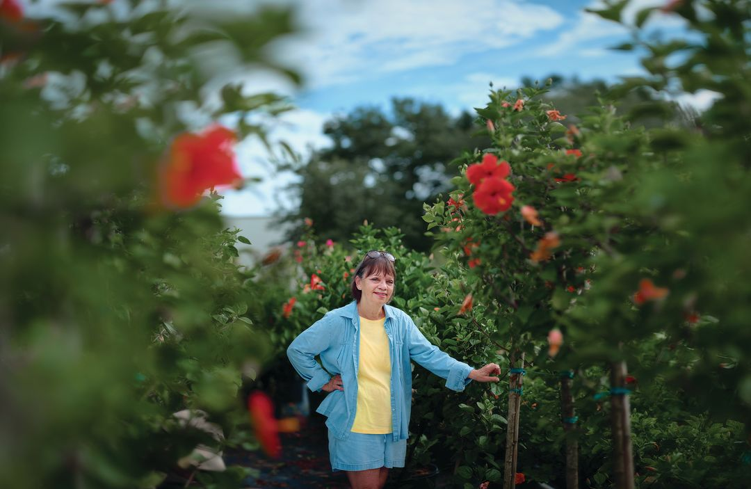 New to Florida Gardening? Author and Gardener Chase Landre Can Help ...