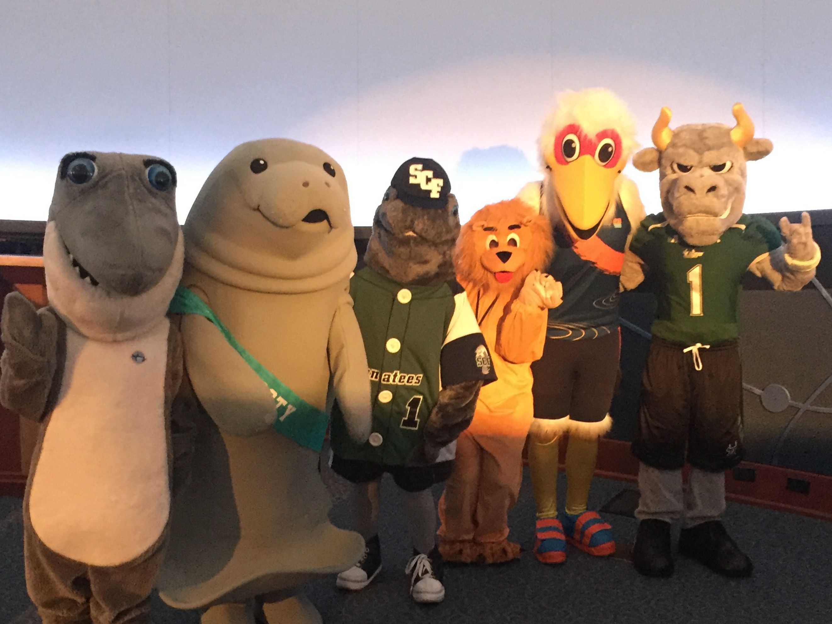 Mascots group rhcrbx