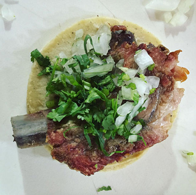 Tacosprovidencia ybwjil