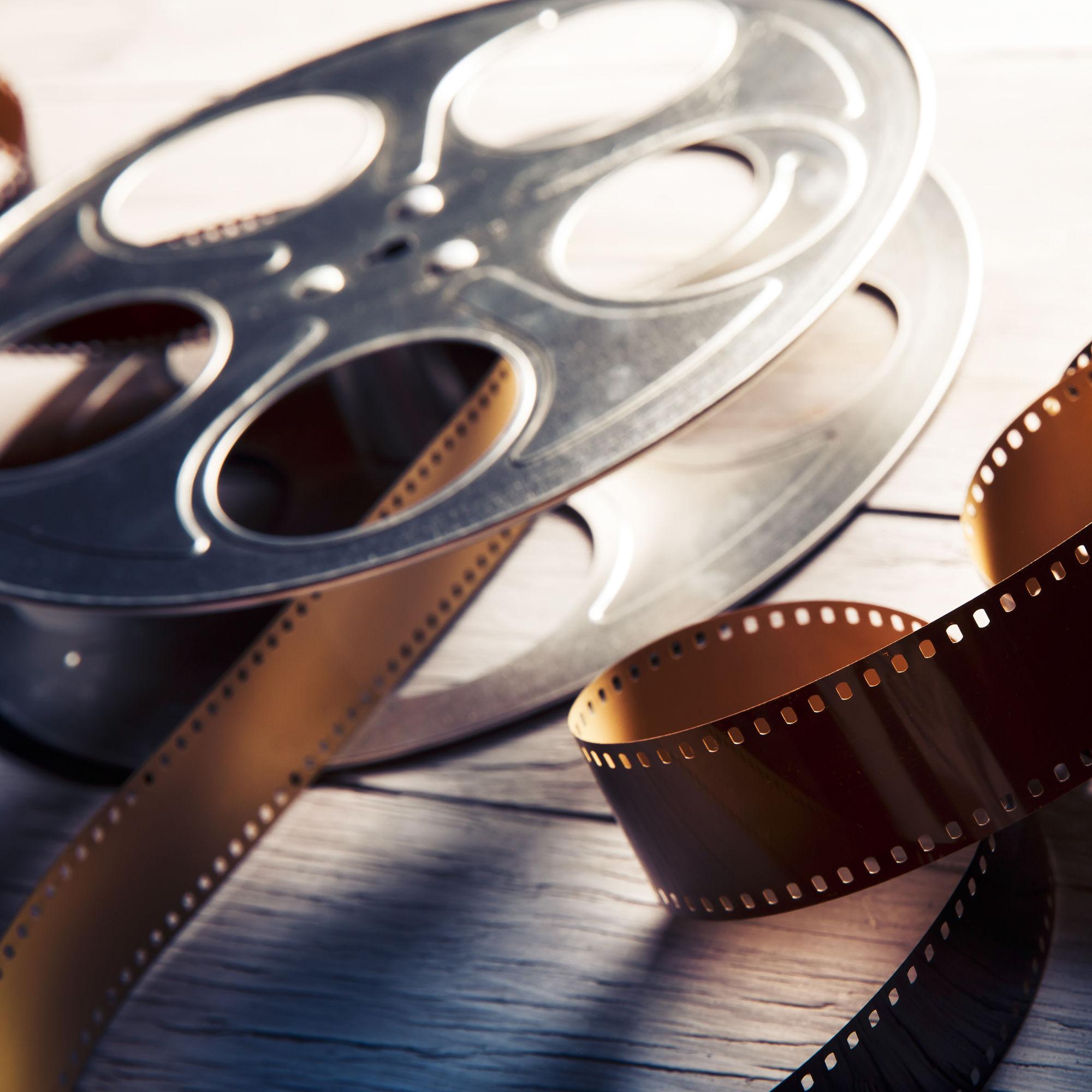 Sarasota film festival xzrmgu