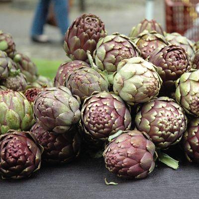Pomo 0716 farmers market artichokes xusgq8