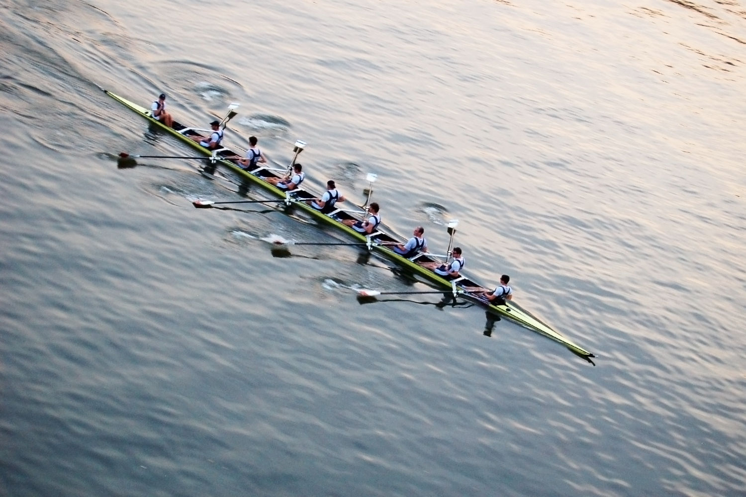 The ultimate spectators guide to the world rowing championships what to look for in the rowing motion fandeluxe Image collections