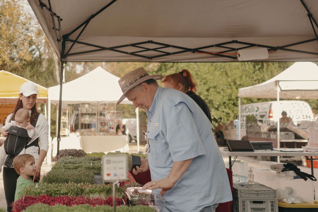 "Farm Fresh Blueberries Locally Grown Mini Street Market Sign Metal 18/"" x 4/"""
