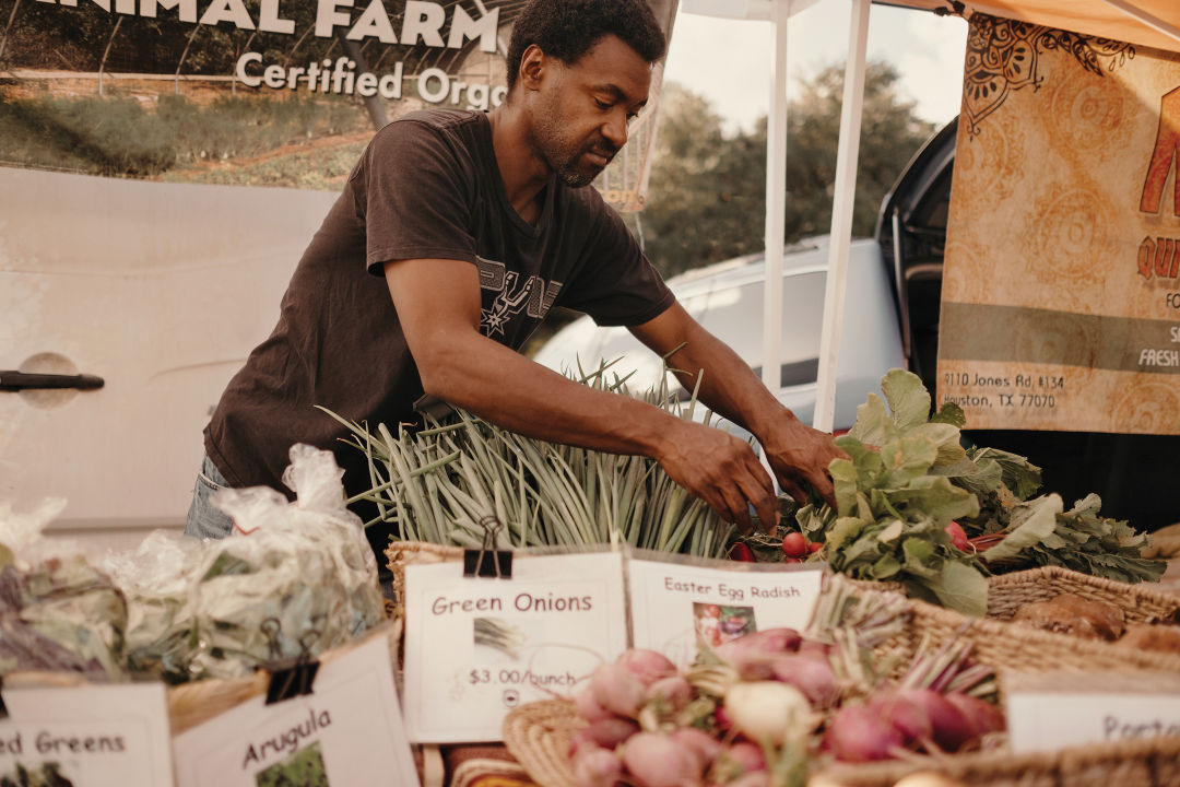0218 rice farmers market 2 jvgyyb