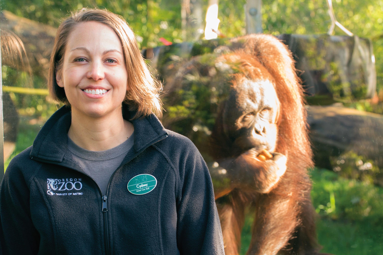 Pomo 0517 orangutan cydney sines g2elv8