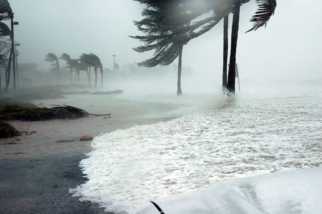 an economical perspective on the economic effects of the hurricane irma Real-time coverage of the global economy, including in-depth analysis of more than 300 economic indicators, topics and long-term trends, plus macro forecasts and outlooks.