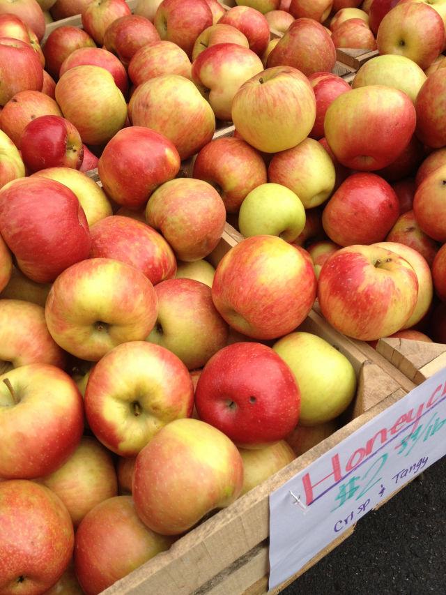 Washington apples oct 2012 by sarah h glpm8f