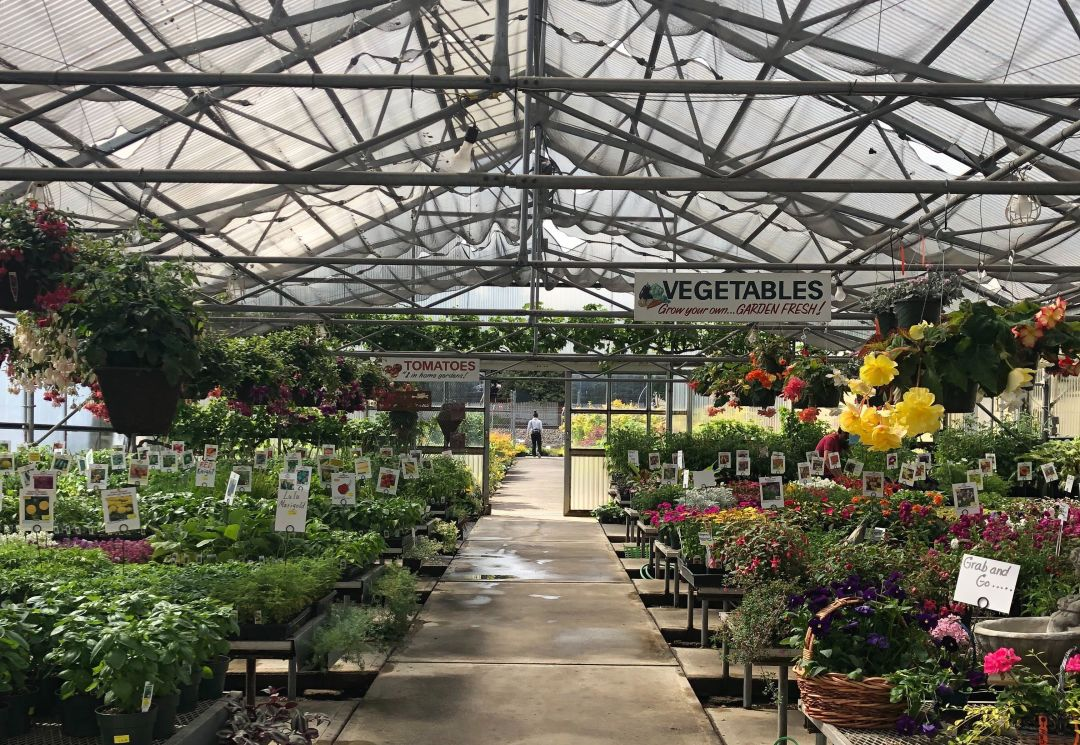 Faced With Peak Season Pressure Portland S Nursery Industry
