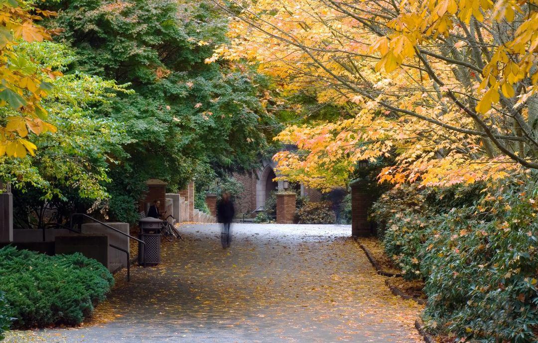 University of Washington in fall