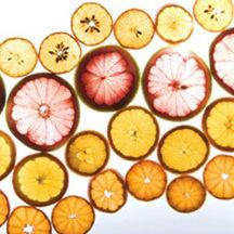 0701 pg177 savor citrus t oxxswi